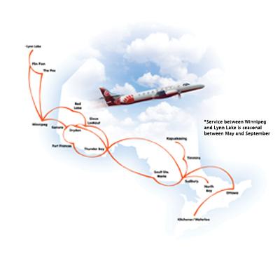 Plane  on Bullish About The Bear   Wings Magazine