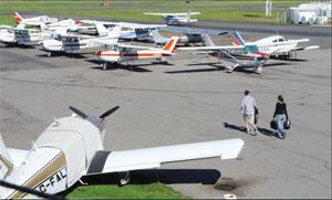 Flight School Strip Wings